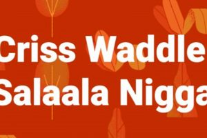 Audio: Salala Niggas by Criss Waddle